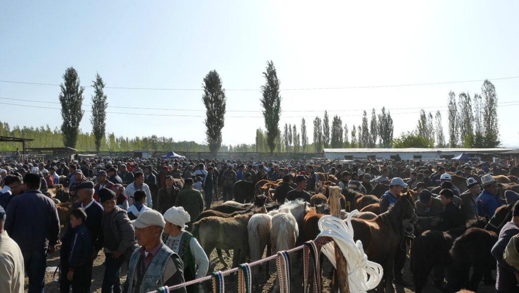 The Animal Bazaar of Osh