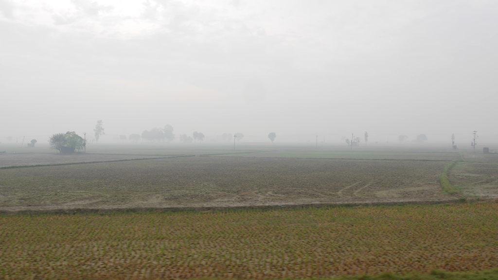 Misty views through the train window