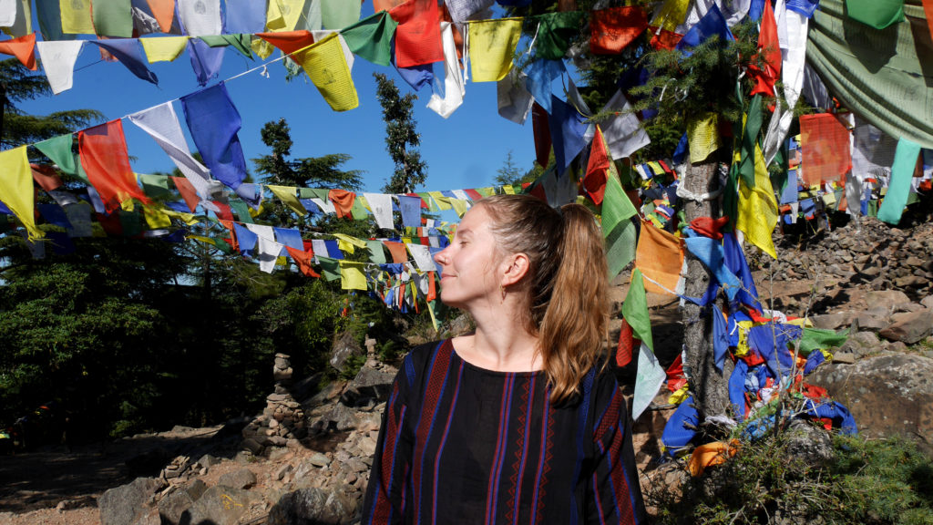 In a forest full of prayer flags