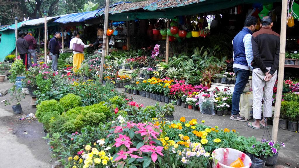 Blumenmarkt in Guwahati