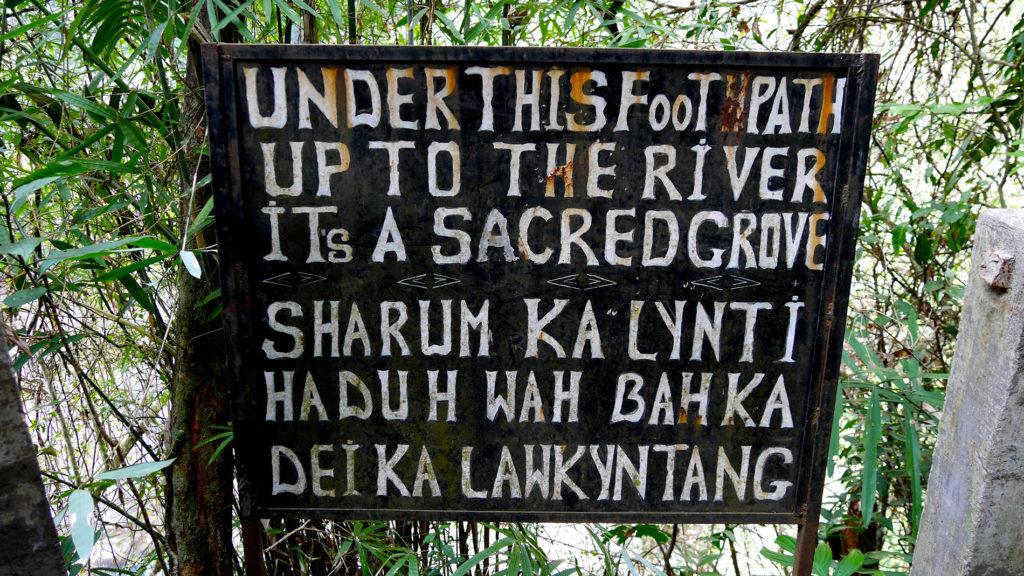 Sacred grove – sounds mystical!