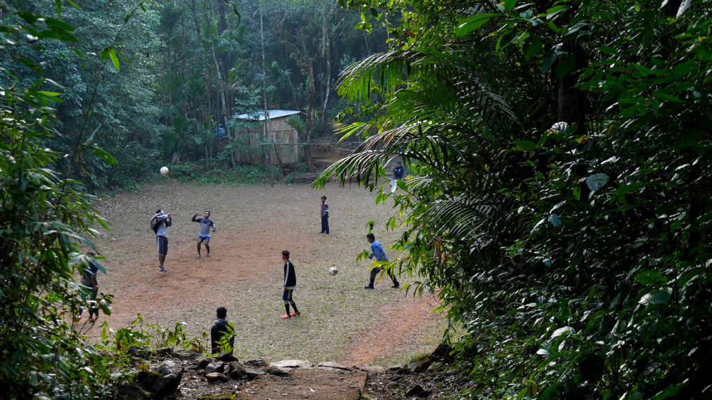 Football field in the jungle