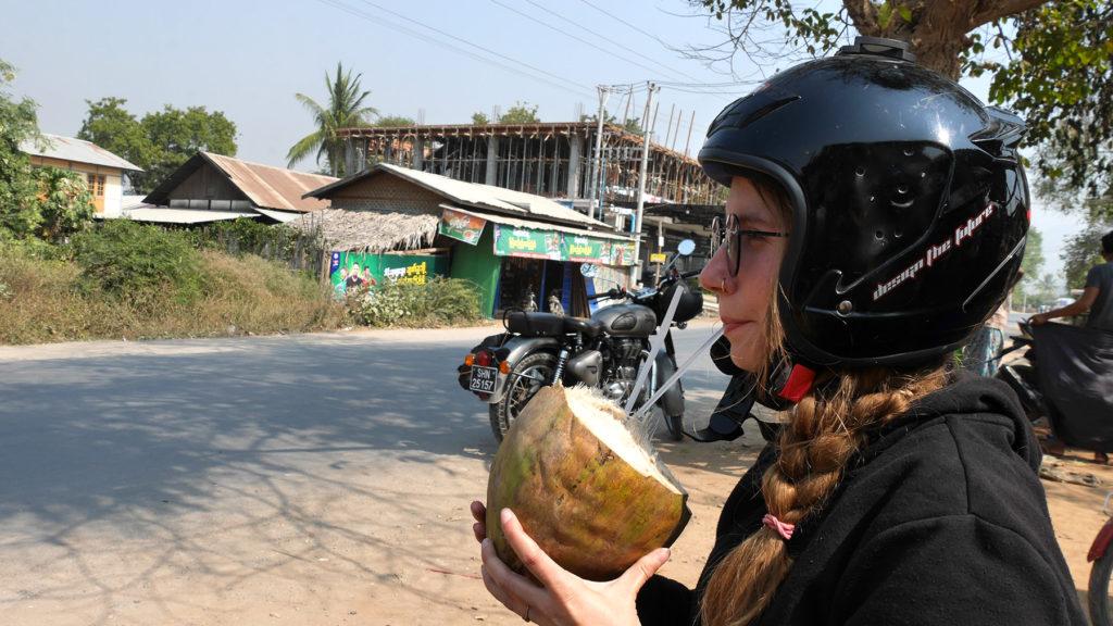Erfrischung aus der Kokosnuss