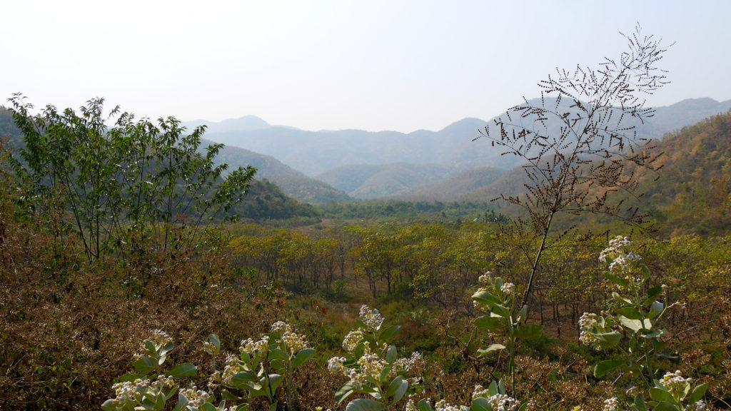 Luonnonkauneutta matkan varrella