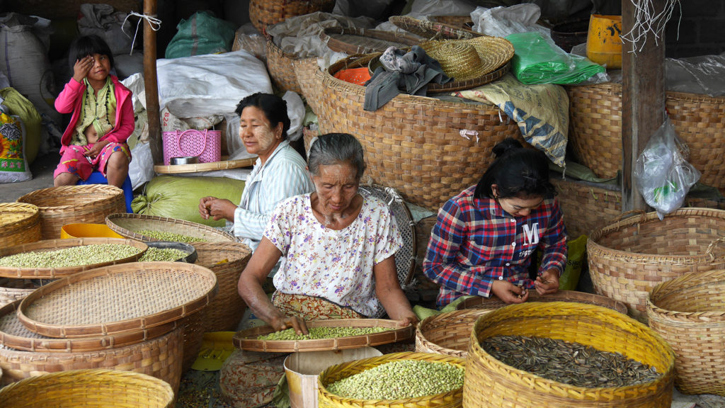 Women of the Tofu Village selecting good beans and seeds