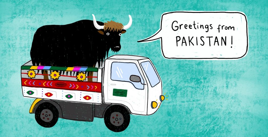 Pakistan illustration